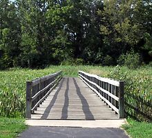 Bridges We Take by AquilusDomini