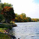 Fall on the Edge of Covell Lake by Scott Hendricks