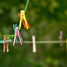 Cloth Pins On The Line by Kuzeytac