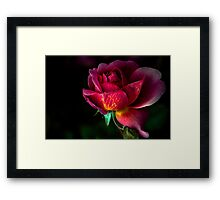 On a day like today, your beauty is even more breathtaking  Framed Print