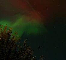 Northern Lights II  [Cochrane Ab-Canada] by Barrie Daniels