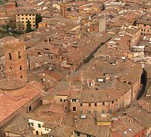 Siena - Rooftops by Maureen Keogh