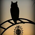 Great Horned Owl ~ Sunset Silhouette  by Kimberly Chadwick