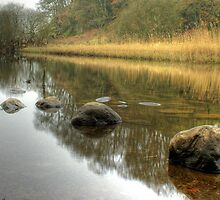 The River Brathay in February by VoluntaryRanger