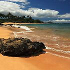 Mokapu Beach Maui by James Eddy