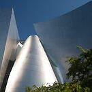 Walt Disney Concert Hall by zzsuzsa