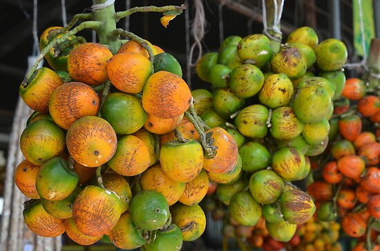 Costa Rican Fruit Market by Margaret  Shark