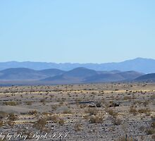 The Mojave by RoyByrdIII