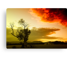The sky, the tree and me Canvas Print