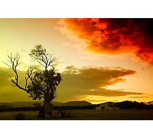 The sky, the tree and me Photographic Print