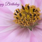 Cosmos Flower - Birthday Card by Ellesscee