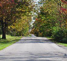 Autumn road 10/04/12 by mltrue