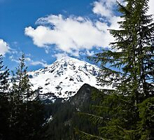 Mt. Rainier from a distance - Mt. Rainier in Washington state by Tisha Clinkenbeard