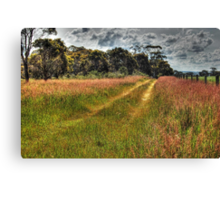 A Country Track #2 Canvas Print