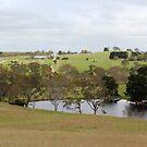 Hender Road, Mount Barker, South Australia by Michael Humphrys