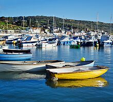 Autumn At The Harbour ~ Lyme Regis by Susie Peek
