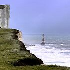 Beachy Head (1) by Larry Davis
