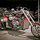 Custom V8 Trike-Bad to the Bone & fast too! by David Owens