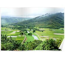 Hanalei valley lookout Poster