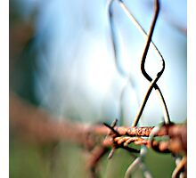 the light is always brighter on the other site of the fence... 2 Photographic Print