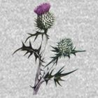 Scottish Thistle T-Shirt by simpsonvisuals