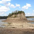 Tower Rock in Southeast Missouri near Wittenburg. by SusieG