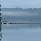 Foggy morning in Longbranch, WA by Kathleen Hamilton