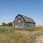 Old Barn by winnipegmike