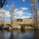 Thredbo River by Catherine Davis