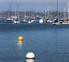 Buoys On the Bay by heatherfriedman