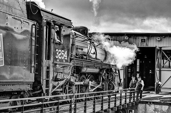 GUIDING THE TRAIN by Diane Peresie