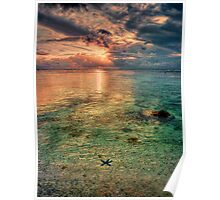Starfish sunset Poster