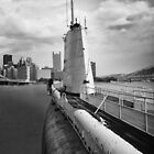 The Invasion of Pittsburgh by David Misko
