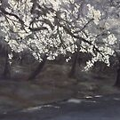 Blossom on a thundery day  by lizzyforrester