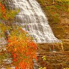 Albion Falls - Side View © by © Hany G. Jadaa © Prince John Photography