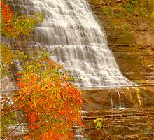 Albion Falls - Side View © by © Hany G. Jadaa © Prince John Photography