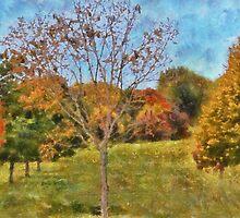 Nature Coloring Trees by Linda Miller Gesualdo