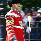 Drum Major - Irish Guards by Colin Shepherd