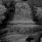Albion Falls in Infrared by Faan Kuypers