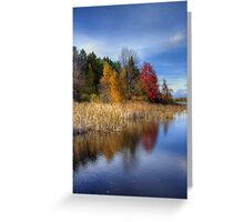 Autumn Wetlands Greeting Card