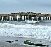 Pier Ruins Atlantic City by Cheri Sundra