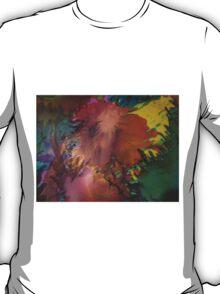 Abstract 1070 T-Shirt