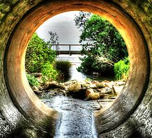 Sewer rats view of Mornington. by photojunk
