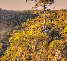 Morning Light - Bungonia National Park, Bungonia NSW Australia - The HDR Experience by Philip Johnson