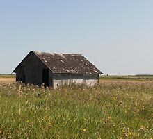 Old Shed by winnipegmike