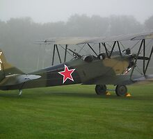 Polikarpov Po-2 by mike  jordan.
