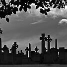 Tombstone City Panorama by David Alexander Elder