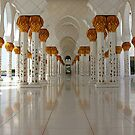 Sheikh Zayed Mosque by dgscotland