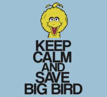 Keep Calm and Save Big Bird! by stevebluey