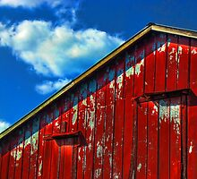 Red, White, and Blue1 by Kyle Wilson